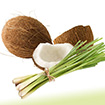 Coconut Lemongrass